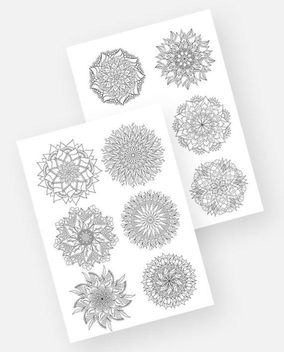 10 Floral mandala preview main