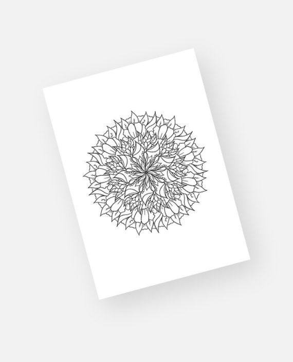 Floral mandala preview 6