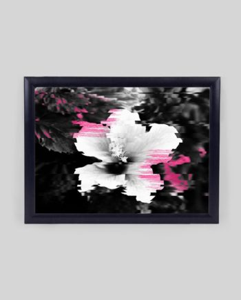 Floral glitch modern black white flower photography pink watercolor brushstroke glitch effect