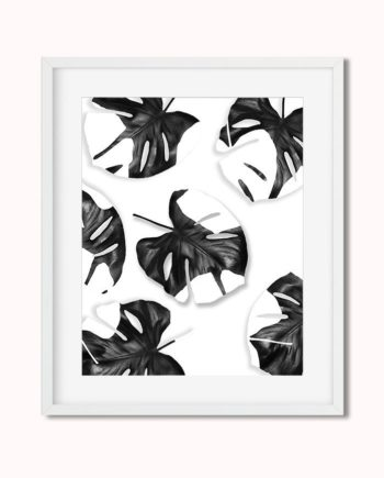 Monstera leaves black white