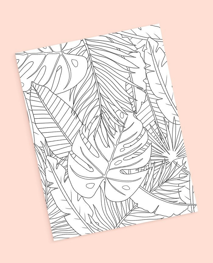 Tropical leaf coloring page