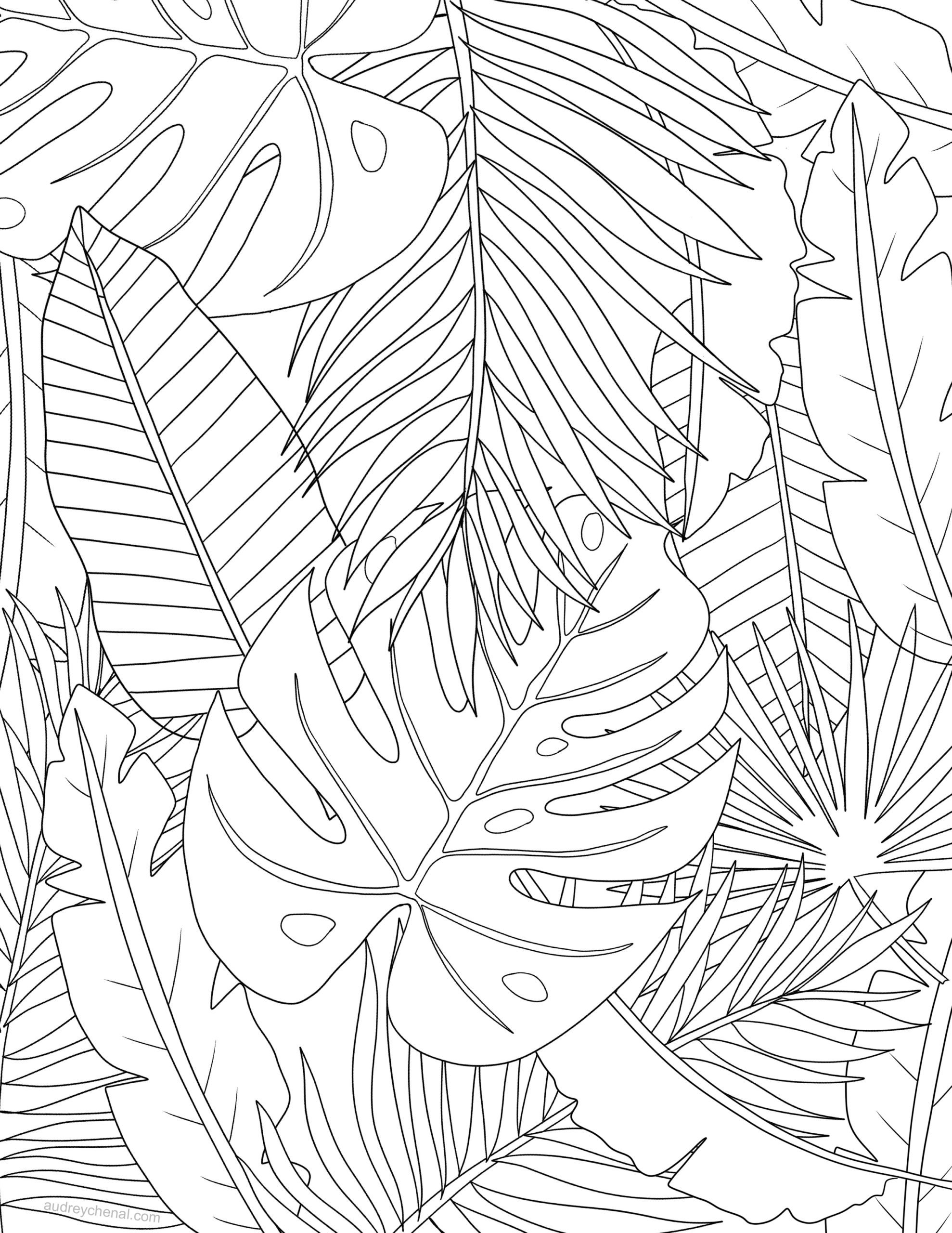 Tropical Leaves Coloring Page Audrey Chenal