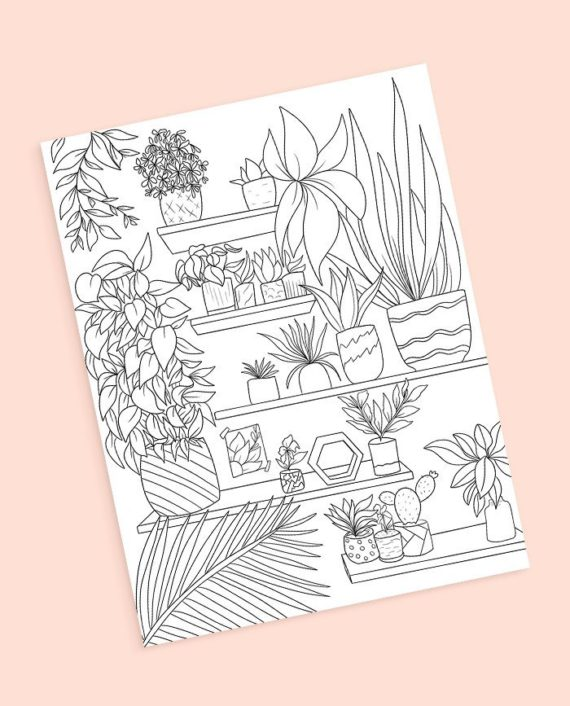 plants shelf coloring preview